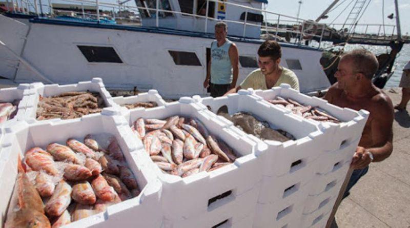 Ecuador presenta dos propuestas ante la OROP-PS para mejorar la gestión y ordenamiento de pesquerías