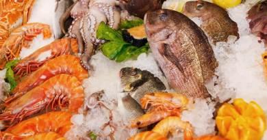 Peces y mariscos de laboratorio para conservarlos