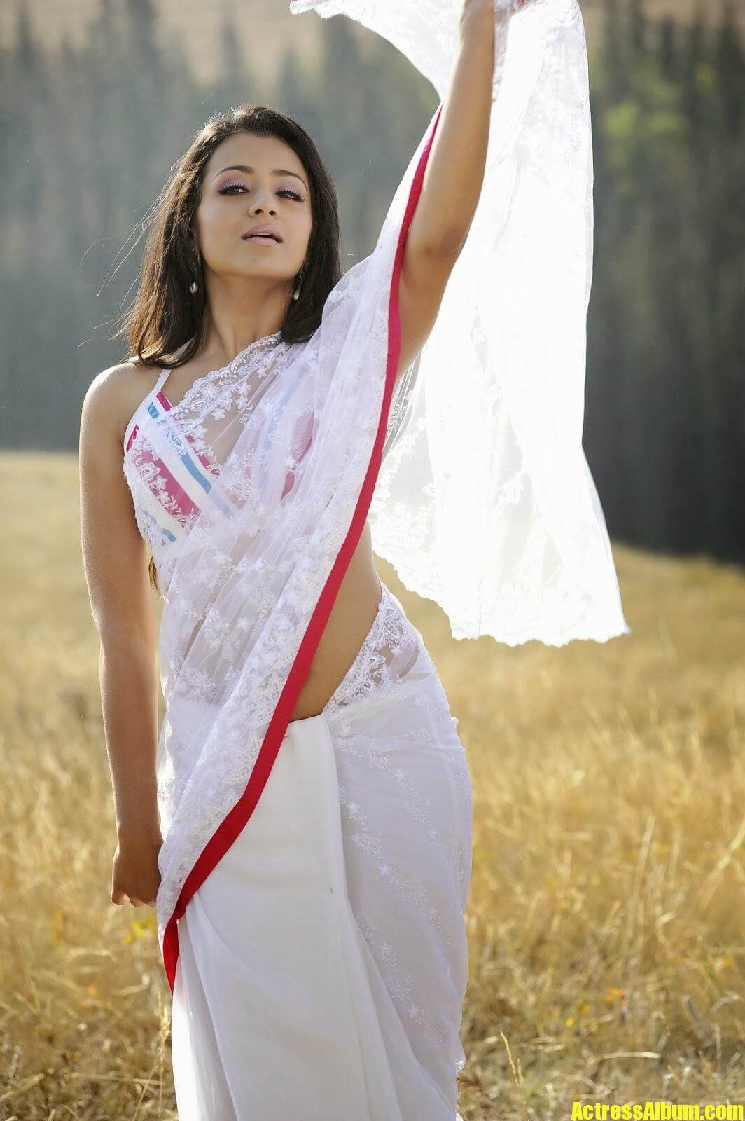 Meena Cute Wallpapers Actress Trisha Hot Navel Exposing In White Saree Photos