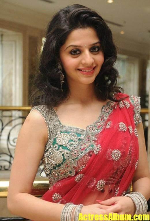 Actress Vedhika Gorgeous Photos In Saree  Actress Album