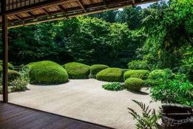jardin.japonais