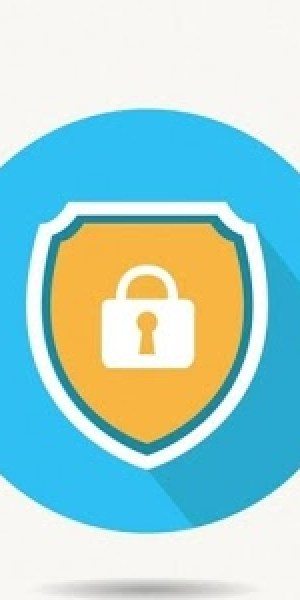 Lock-Plug-icone