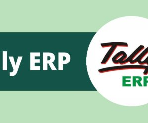 Tally ERP 9 Release 5.1.2 Crack Full Version Download