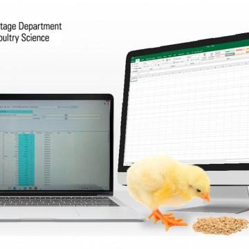 Anpro Campus convoca a participar del curso internacional Formulación de Alimentos y Modelaje para Aves