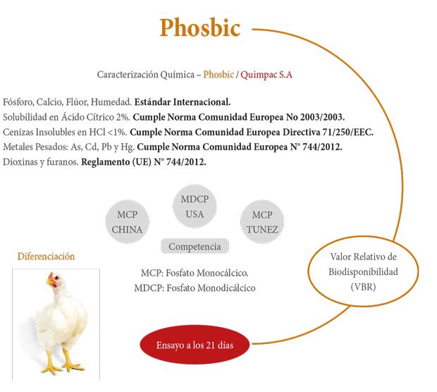 Cuadro de phosbic
