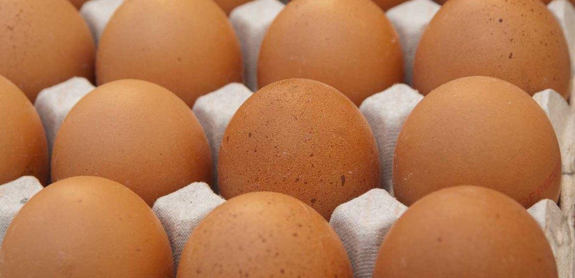 Cómo mejorar la calidad del huevo
