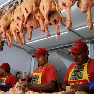 Precio mundial del pollo subirá a fines de 2019