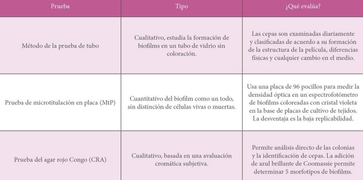 Revista_Aves_75-73