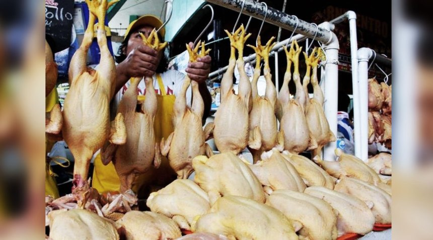Bolivia cae un 14% en la producción de pollo para evitar la sobreoferta