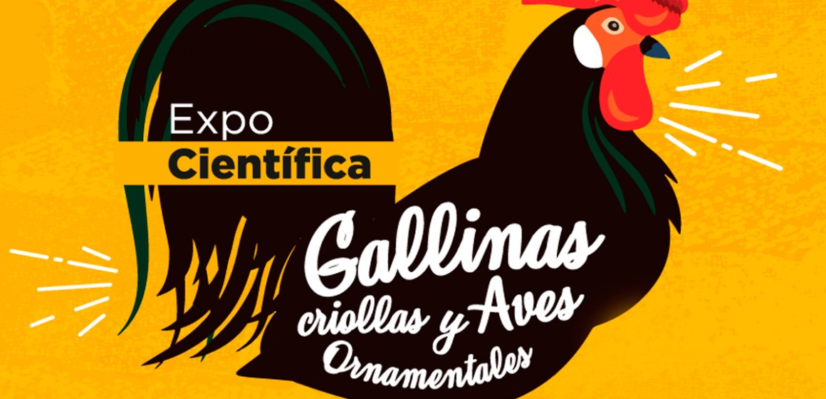 Grupo ISAMISA participa de la segunda Expo Científica