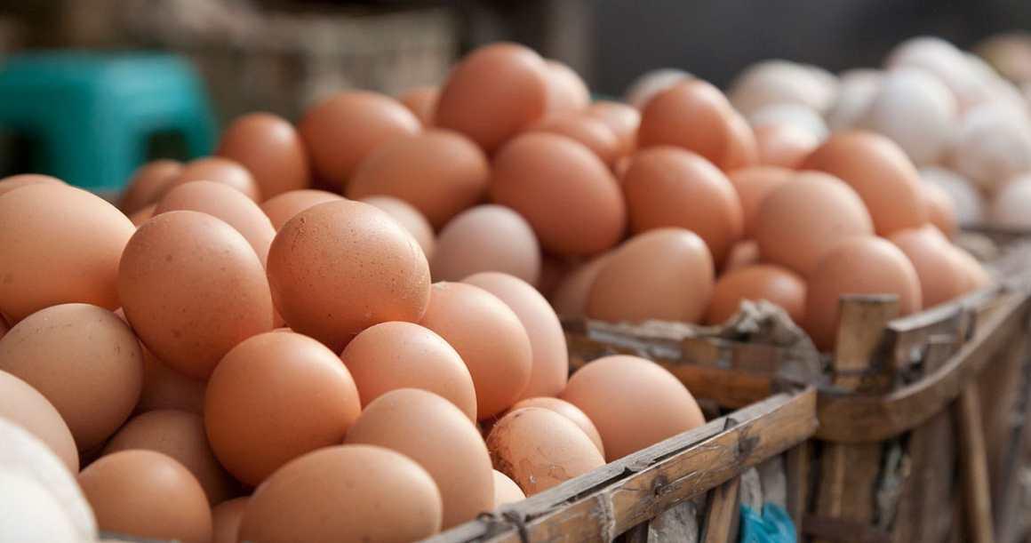 cabecera-huevos-navarra