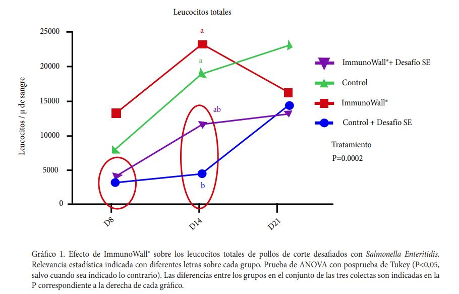 Gráfico 1. Efecto de ImmunoWall® sobre los leucocitos totales de pollos de corte desafiados con Salmonella Enteritidis.