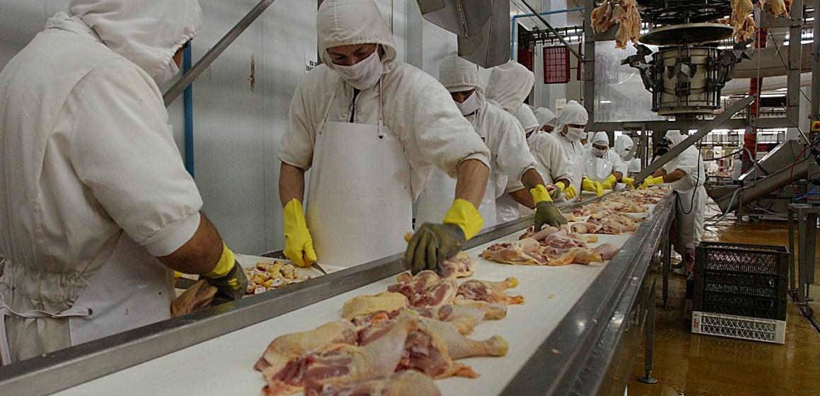 Mercado avícola mundial será positivo durante el 2020