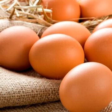 México: sube precio del huevo en mercados de Veracruz