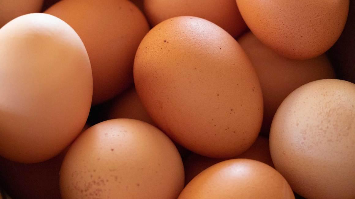 destada-huevos