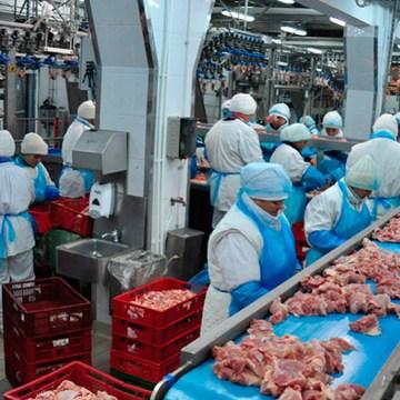 China reabrió el acceso para los cargamentos de carne de pollo de EE. UU.