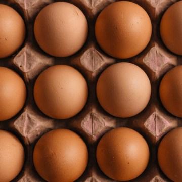 Argentina: distribuidores piden no comprar huevo por dos semanas