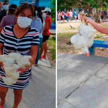 COVID-19: familias vulnerables de Piura recibieron pollo