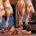 COVID-19: avicultores colombianos aseguran abastecimiento de pollos y huevos