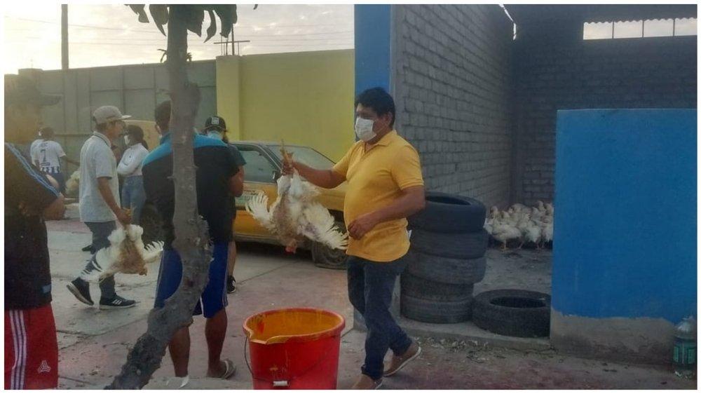 Se donaron más de 2 mil pollos en Trujillo FOTO: Thiago Ninatanta