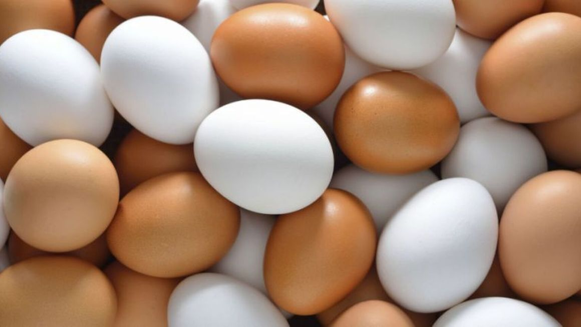 Alimentacion-Huevo-Nutricion_410970417_127186274_1706x960