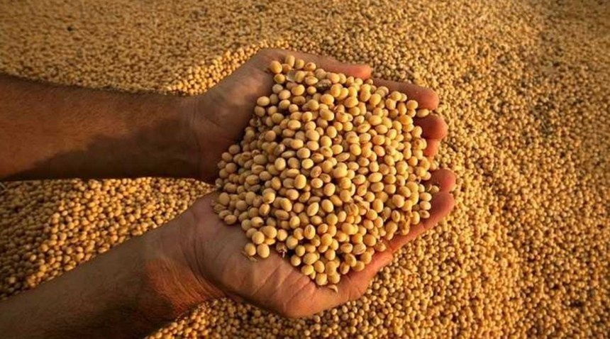 Alza en producción de soja en EEUU impacta en Latinoamérica