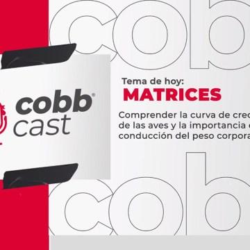 ¡Cobb Cast ahora también se puede escuchar en español!
