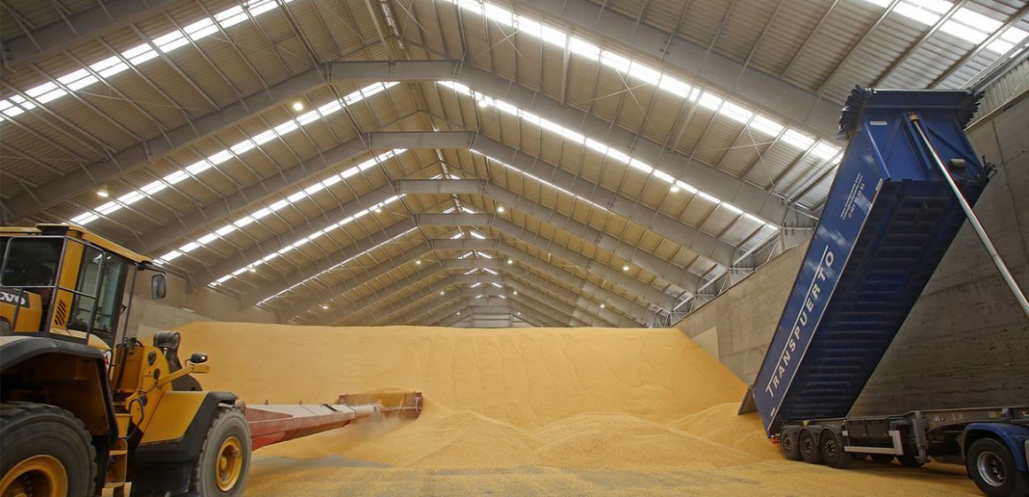 Brasil importa maíz de Argentina ante gran demanda de las empresas cárnicas