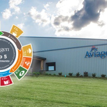 Los cinco compromisos principales de Aviagen: creando un futuro sostenible