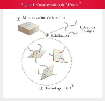 Estabilidad sustrato/enzima