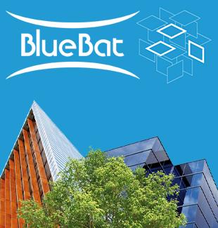 bluebat