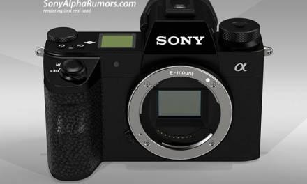 Faire le cas pour le Sony A7000