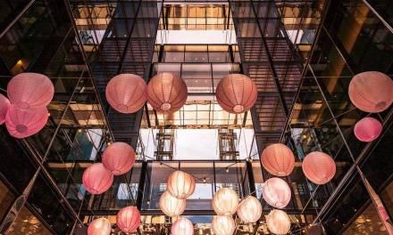 des lanternes pour célébrer la saison des fleurs de cerisier