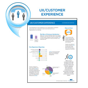 UX/Customer Experience Infographic