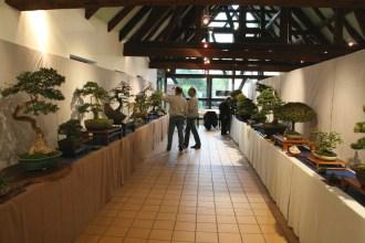 selection régionale EST 2012 - exposition 2