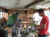 apprendre le bonsai au japon - apprentis
