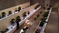 exposition - kokufu ten 2013 -2