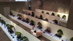 exposition - kokufu ten 2013