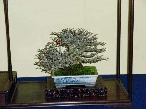 38th Gafu-ten in Kyoto 2013 - 59
