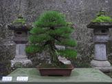 visite a nikko près de tokyo 2