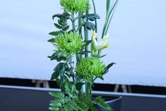 ikebana lorraine - roseau noir - 06