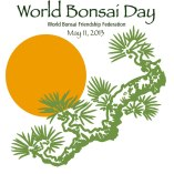 world bonsai day 2013