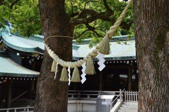 visite au sanctuaire meiji tokyo - 04