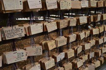 visite au sanctuaire meiji tokyo - 09