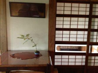 bonsai mori exposition 21