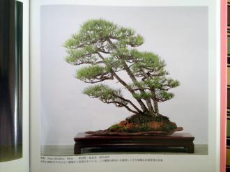 kokufuten 82 - le livre 09