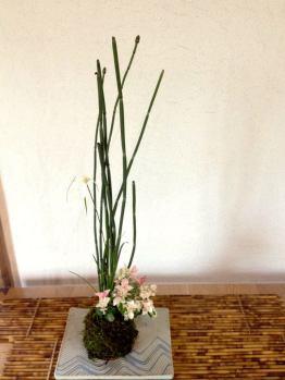 bonsai mori - tokyo - atelier kokedama 1
