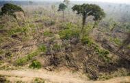Climat : « Il faut un signal fort de la mobilisation de ressources »