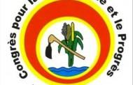 ELECTIONS AU BURKINA : le CDP pour le dégel de ses avoirs