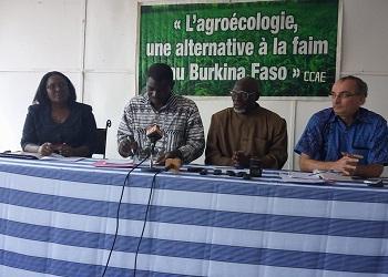 Le Collectif citoyen pour l'Agro-écologie (CCAE):Une marche le 2 juin prochain pour s'opposer aux ''moustiques OGM''